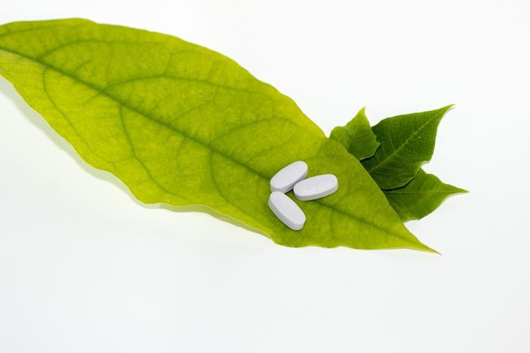pilulky a listy.jpg